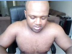 Webcam Super Black Anaconda
