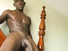 I OWN THE COCK OF A HORSE 001