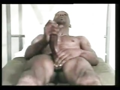 Mr.Big Cock