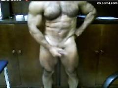 hung muscle cock  (   2 de 2 )